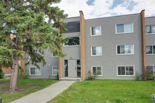 Photo 1: 201 3518 44 Street SW in Calgary: Glenbrook Apartment for sale : MLS®# A1119375