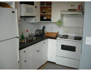 Photo 4: 302 234 E 5TH Ave in Vancouver: Mount Pleasant VE Condo for sale (Vancouver East)  : MLS®# V642793