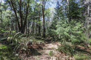 Photo 91: Lot 2 Eagles Dr in : CV Courtenay North Land for sale (Comox Valley)  : MLS®# 869395