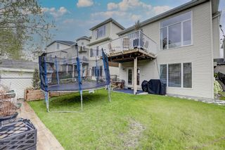 Photo 47: 57 Discovery Ridge Hill SW in Calgary: Discovery Ridge Detached for sale : MLS®# A1111834