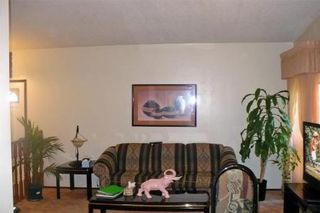 Photo 9: 143 TALLMAN ST in Winnipeg: Residential for sale (Canada)  : MLS®# 1013378