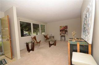 Photo 16: 3447 LANE CR SW in Calgary: Lakeview House for sale ()  : MLS®# C4270938