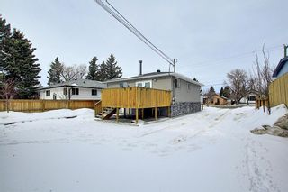 Photo 41: 429 1 Avenue NE: Airdrie Detached for sale : MLS®# A1071965