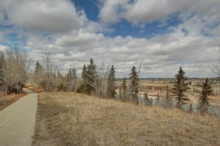 Photo 35: 467 QUEENSLAND Circle SE in Calgary: Queensland Detached for sale : MLS®# C4236793