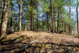 Photo 34: LOT#70 PINE Crescent in Huntsville: Vacant Land for sale : MLS®# 40109977