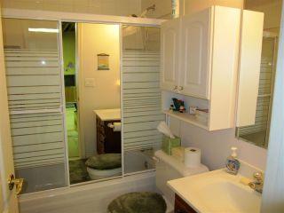 Photo 11: 23647 TAMARACK Lane in Maple Ridge: Albion House for sale : MLS®# R2019626