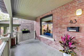 Photo 3: 43 Sparkhall Avenue in Toronto: North Riverdale House (3-Storey) for sale (Toronto E01)  : MLS®# E4976542