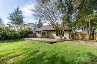 Photo 16: 21816 DONOVAN Avenue in Maple Ridge: West Central House for sale : MLS®# R2560763