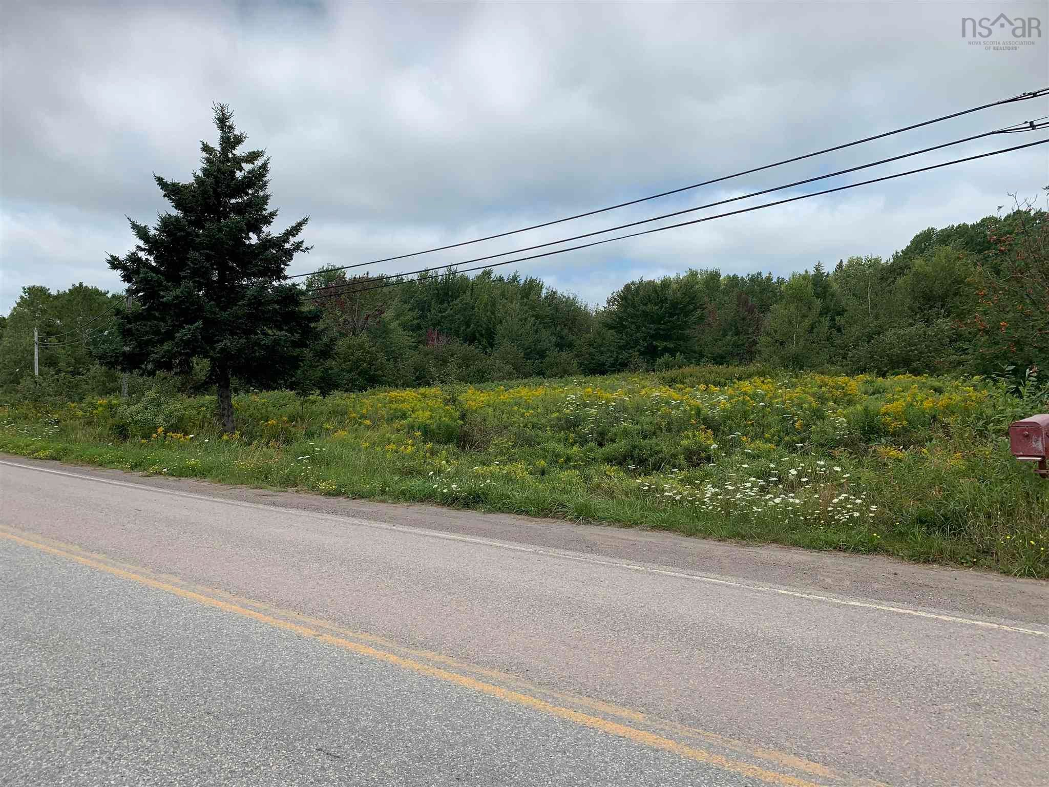 Main Photo: Highway 4 in Linacy: 108-Rural Pictou County Vacant Land for sale (Northern Region)  : MLS®# 202121191