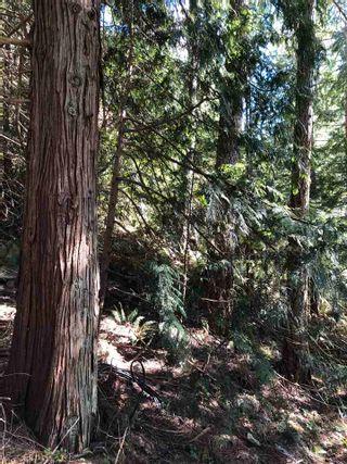 Photo 5: LOT 108 SEAVIEW Road in Sechelt: Sechelt District Land for sale (Sunshine Coast)  : MLS®# R2577750