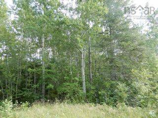 Photo 12: Salem Road in Greenhill: 108-Rural Pictou County Vacant Land for sale (Northern Region)  : MLS®# 202121181
