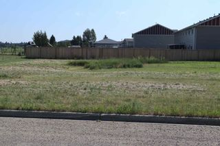 Photo 8: 50 Street 53 Avenue: Thorsby Vacant Lot for sale : MLS®# E4257254