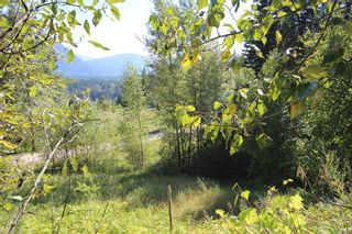 Photo 8: 26 2481 Squilax Anglemont Road: Lee Creek Land Only for sale (Shuswap)  : MLS®# 10116283