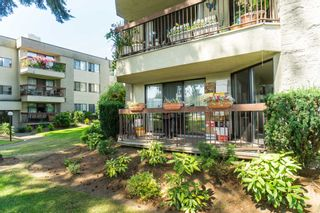 Photo 27: 135 31955 Old Yale Road in Abbotsford: Abbotsford West Condo for sale : MLS®# R2396453