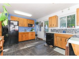 Photo 14: 2941 267B Street in Langley: Home for sale : MLS®# F1446771