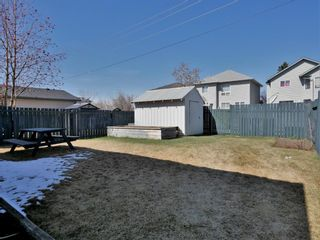 Photo 20: 388 Harvest Rose Circle NE in Calgary: Harvest Hills Detached for sale : MLS®# A1090234