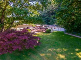 Photo 40: 35008 TOWNSHIPLINE Road in Abbotsford: Matsqui House for sale : MLS®# R2589478
