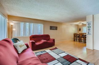 Photo 7: Property for sale: 1745-49 S Harvard Blvd in Los Angeles