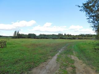 Photo 2: Rge Rd 231 North of Twp Rd 564: Rural Sturgeon County Rural Land/Vacant Lot for sale : MLS®# E4262842