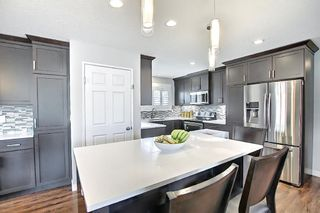 Photo 8: 5919 Pinepoint Drive NE in Calgary: Pineridge Detached for sale : MLS®# A1111211