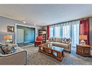 Photo 4: 551 PARKRIDGE Drive SE in Calgary: Parkland House for sale : MLS®# C4045891