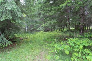 Photo 3: 108 Airstrip Road in Anglemont: North Shuswap Land Only for sale (Shuswap)  : MLS®# 10067018