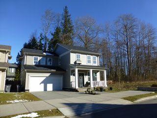 "Photo 1: 306 173RD Street in Surrey: Pacific Douglas House for sale in ""PACIFIC DOUGLAS"" (South Surrey White Rock)  : MLS®# F1404993"