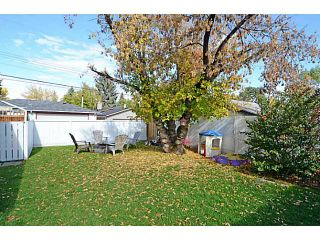 Photo 16: 656 84 Avenue SW in Calgary: Haysboro Residential Detached Single Family for sale : MLS®# C3637895