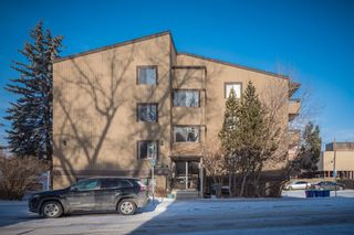 Photo 2: 302 1222 Kensington Close NW in Calgary: Hillhurst Apartment for sale : MLS®# A1056471