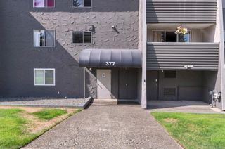 Photo 39: 210 377 Dogwood St in : CR Campbell River Central Condo for sale (Campbell River)  : MLS®# 886108