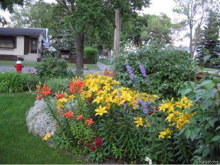 Photo 20: 501 Victoria Avenue West in WINNIPEG: Transcona Residential for sale (North East Winnipeg)  : MLS®# 1405070