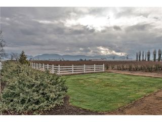 Photo 20: 778 SUMAS Way in Abbotsford: Central Abbotsford House for sale : MLS®# F1433210