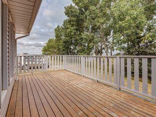 Photo 34: 244083 Range Road 255: Rural Wheatland County Detached for sale : MLS®# C4261442