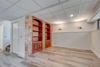 Photo 20: 4908 44 Avenue NE in Calgary: Whitehorn Semi Detached for sale : MLS®# A1129146