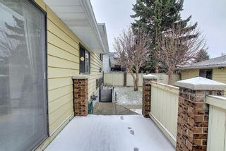 Photo 43: 140 Thames Close NW in Calgary: Thorncliffe Detached for sale : MLS®# A1097862