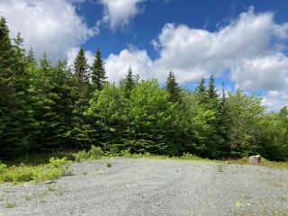 Photo 12: Lot 29 Anderson Drive in Sherbrooke: 303-Guysborough County Vacant Land for sale (Highland Region)  : MLS®# 202115631