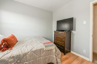 Photo 23: 73 Kinrade Avenue in Hamilton: House for sale : MLS®# H4065497