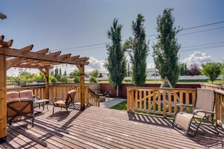 Photo 46: 462 WILLIAMSTOWN Green NW: Airdrie Detached for sale : MLS®# C4264468
