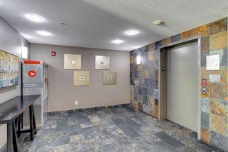 Photo 29: 1213 310 Mckenzie Towne Gate SE in Calgary: McKenzie Towne Apartment for sale : MLS®# A1121201