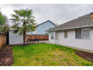 Photo 29: 12336 NIKOLA Street in Pitt Meadows: Central Meadows House for sale : MLS®# R2523791