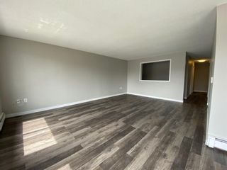 Photo 11: 425 Big Springs Drive SE: Airdrie Detached for sale : MLS®# A1087684