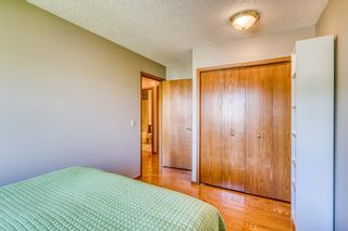 Photo 20: 64 Hawkford Crescent NW in Calgary: Hawkwood Detached for sale : MLS®# A1144799