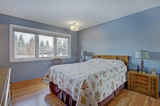 Photo 27: 6742 Leaside Drive SW in Calgary: Lakeview Detached for sale : MLS®# A1063976