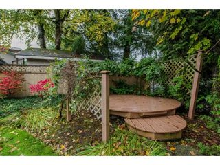 Photo 20: 32737 NANAIMO Close in Abbotsford: Central Abbotsford House for sale : MLS®# R2117570