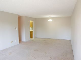 """Photo 5: 210 12096 222 Street in Maple Ridge: West Central Condo for sale in """"CANUCK PLAZA"""" : MLS®# R2531266"""