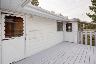 Photo 46: 9839 7 Street SE in Calgary: Acadia Detached for sale : MLS®# A1145363