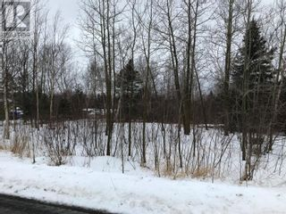 Photo 7: 0 New World Island Forestry Access Road in Summerford: Vacant Land for sale : MLS®# 1229207