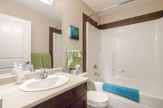 Photo 29: 8553 88 Street in Edmonton: Zone 18 House Half Duplex for sale : MLS®# E4229581