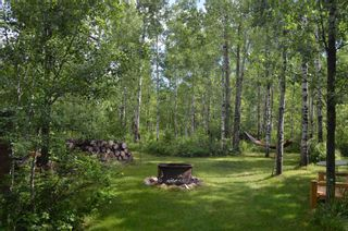 Photo 45: 472016 RGE RD 241: Rural Wetaskiwin County House for sale : MLS®# E4242573