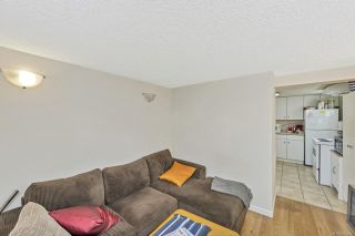 Photo 20: 1451 Lang St in : Vi Mayfair House for sale (Victoria)  : MLS®# 871462
